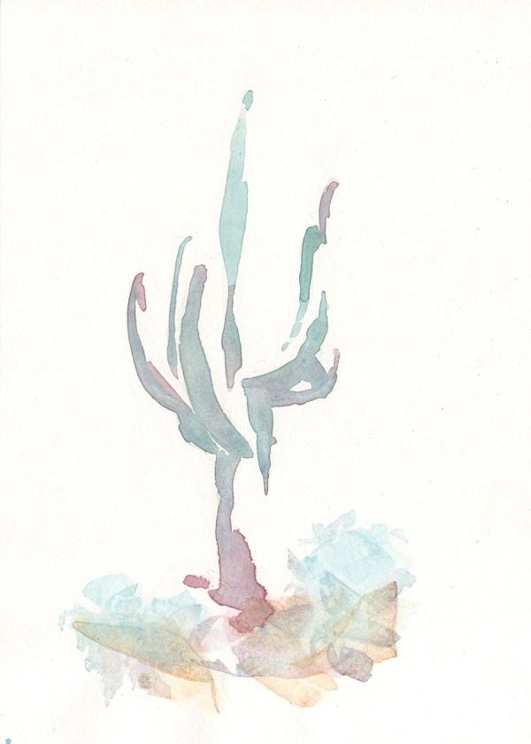 Saguaro Study 4