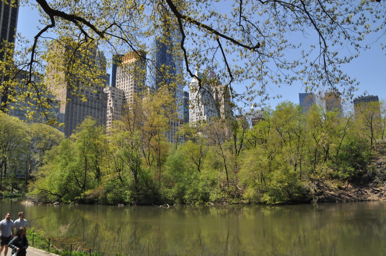 new-york-viaggio-dei-sogni-consigli-guida-dove-andare-valentina-coco-park-central-hotel-fashion-blogger