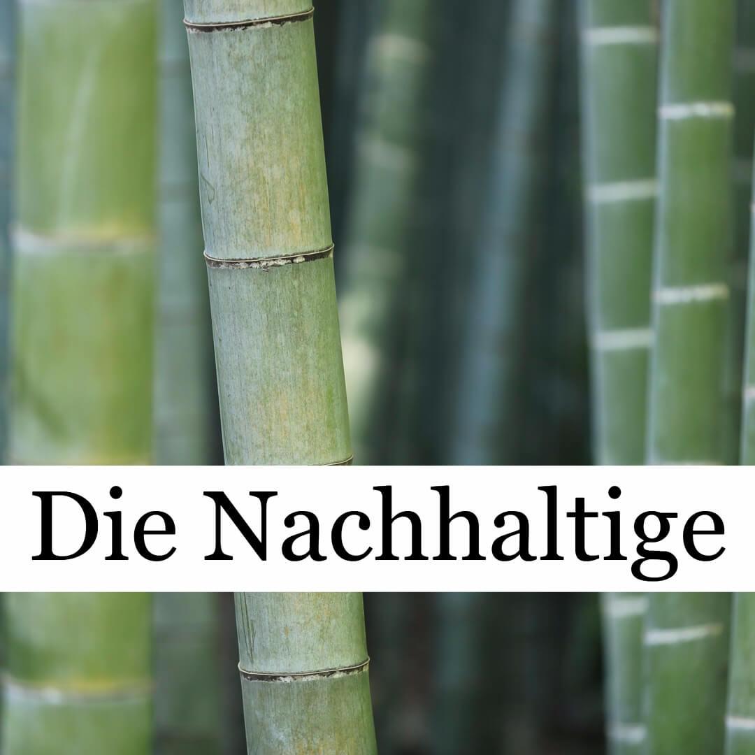 bambus polyester aktivkohle zahnseide biologisch abbaubar zahnseidenkampagne