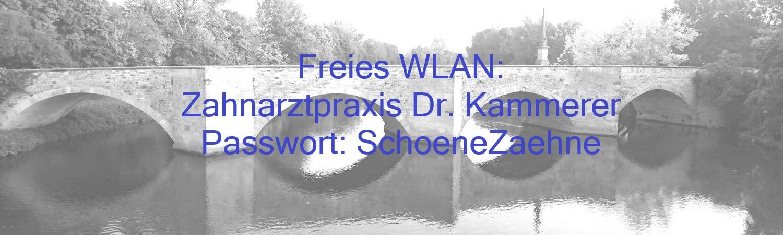 Wendlingen_Brücke3_WLAN2