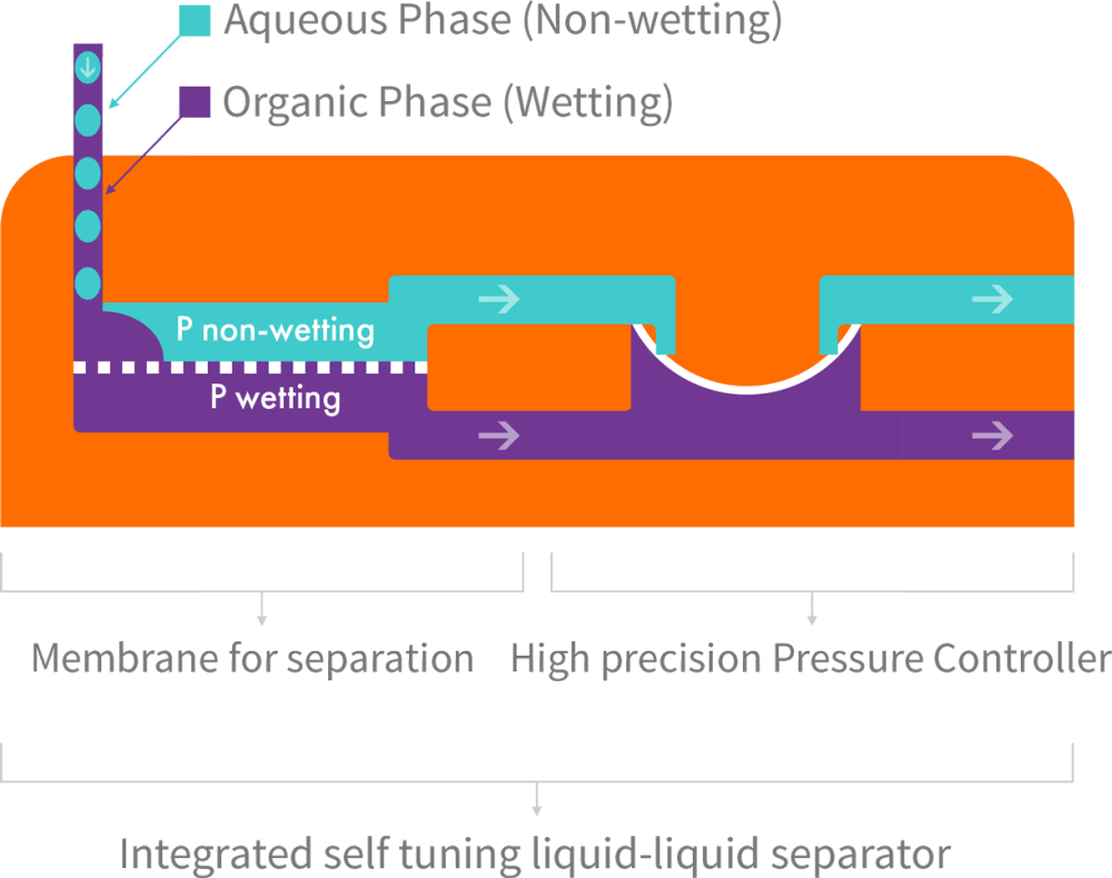 medium resolution of separator function when a hydrophobic membrane is in place the wetting phase purple passes through the membrane dotted line while the non wetting