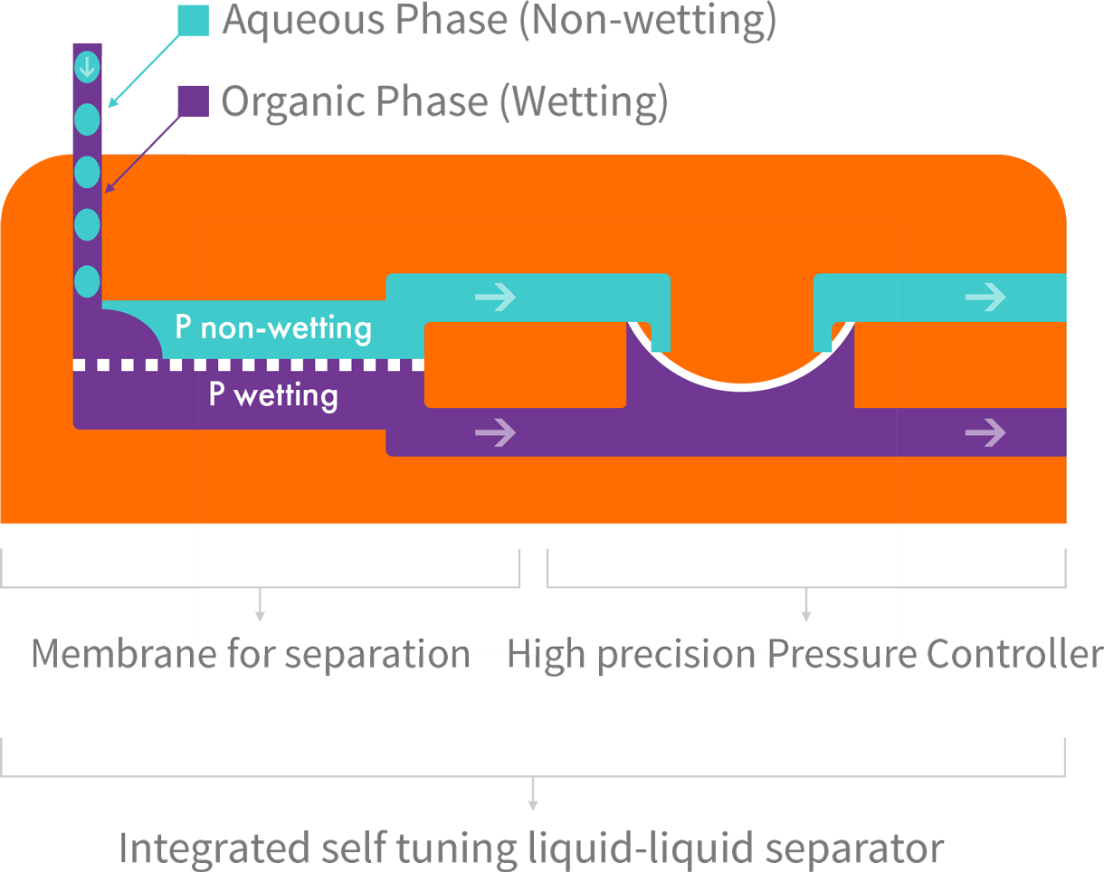 hight resolution of separator function when a hydrophobic membrane is in place the wetting phase purple passes through the membrane dotted line while the non wetting