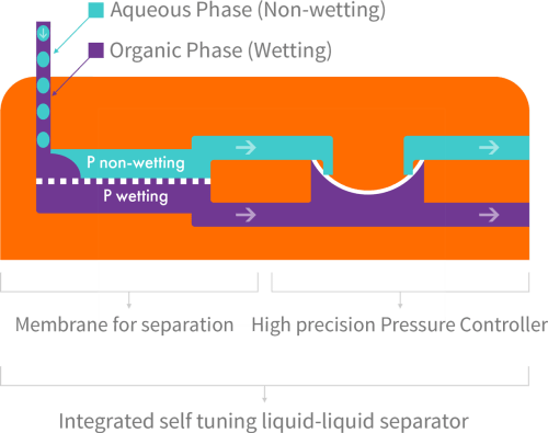 small resolution of separator function when a hydrophobic membrane is in place the wetting phase purple passes through the membrane dotted line while the non wetting