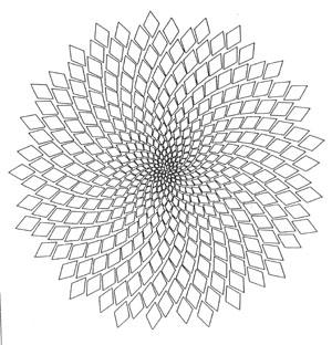 https://i0.wp.com/www.zakairan.com/ProductsGeoJewelry/Images/SunFlower-SpiralSeedTorus-300.jpg