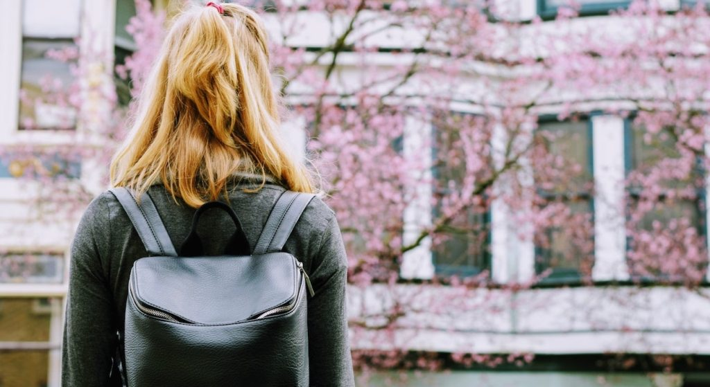 backpack for working women