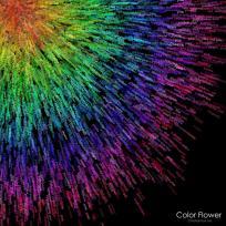 color-flower