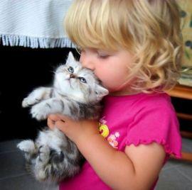 fille chaton mignon