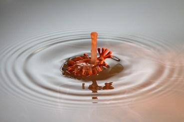 goutte-eau-photo-331920