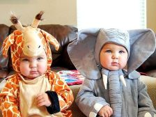 bebe togre elephant