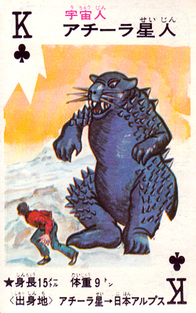 cartes card pachimon_13