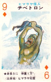 cartes card pachimon_22