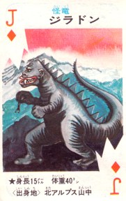 cartes card pachimon_24