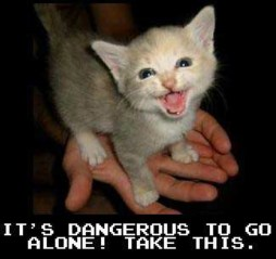 zelda - its dangerous to go alone take this - cat chat