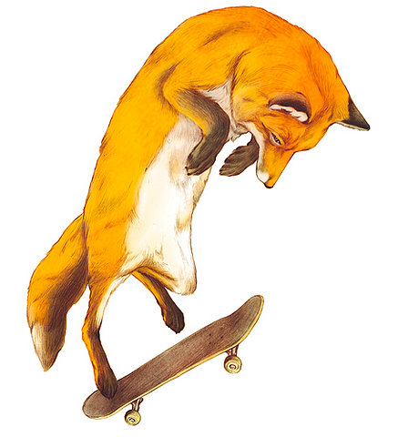skate renard