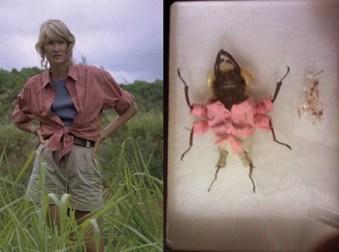 scarabee en acteur de jurassic parc 1