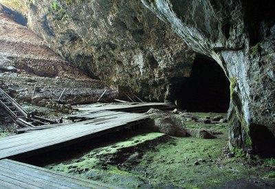 magimik id plateau