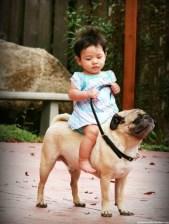 enfant chien mib4