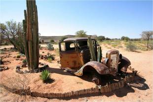voiture desert cactus phichau2