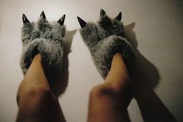 pantoufle pattes animal