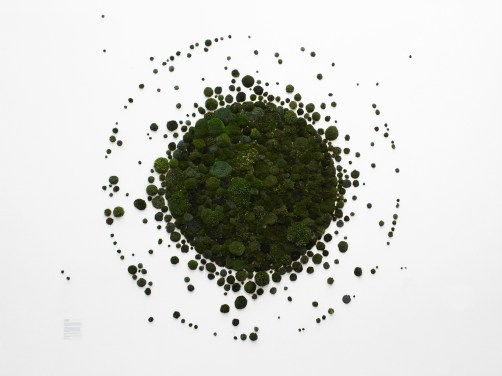 graph vegetal ronds