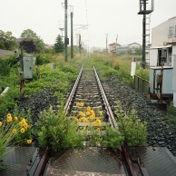 japon rail Joban-line