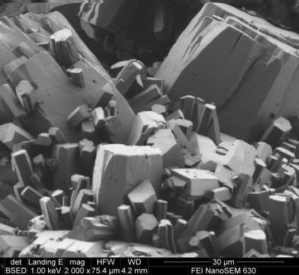 microscope cristaux