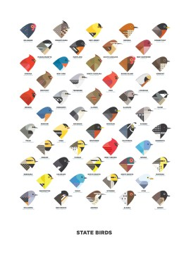 State_Birds_v3