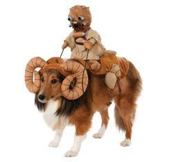 costume chien star wars sables