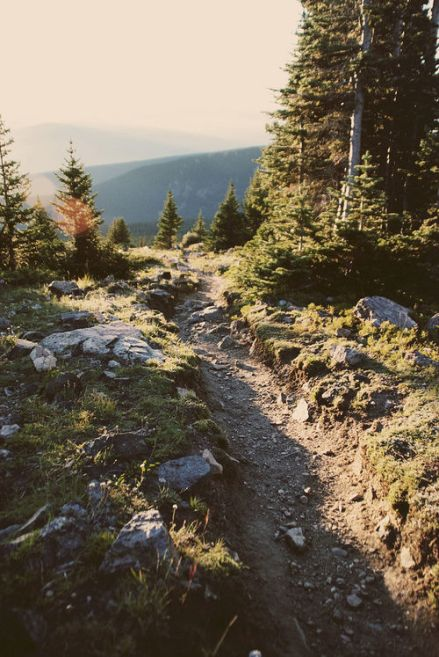 chemin montagne