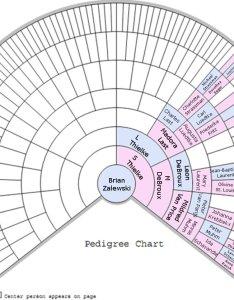 Click for larger also dna  marks the spot zalewski family genealogy rh zalewskifamily