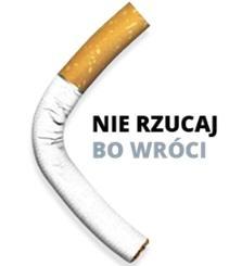 logo kampanii 2