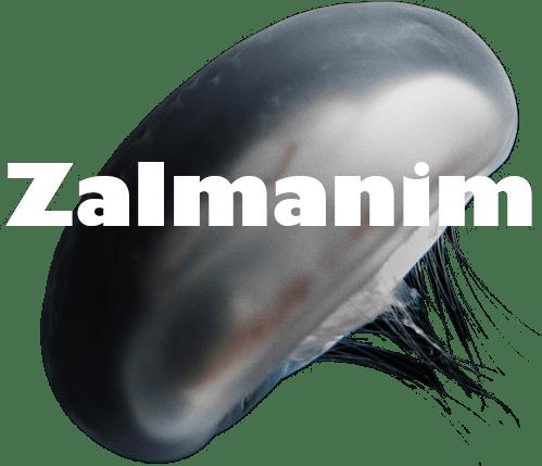 Zalmanim