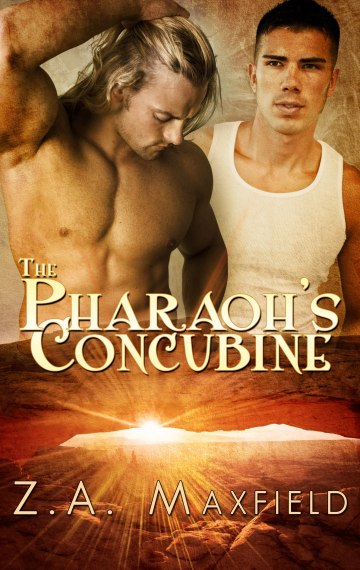 The Pharaoh's Concubine