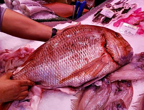 Pescadería Mercado de Chamartín
