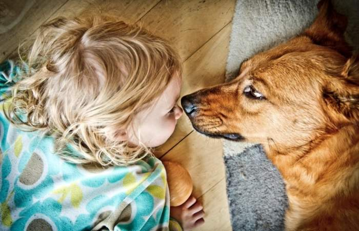 animali in casa per bambini