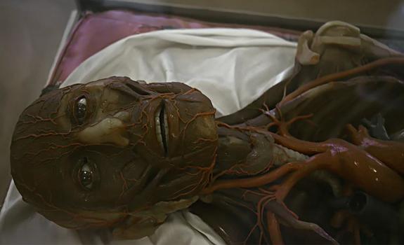 The Visit: il film che svela l'uomo dal punto di vista degli extraterrestri