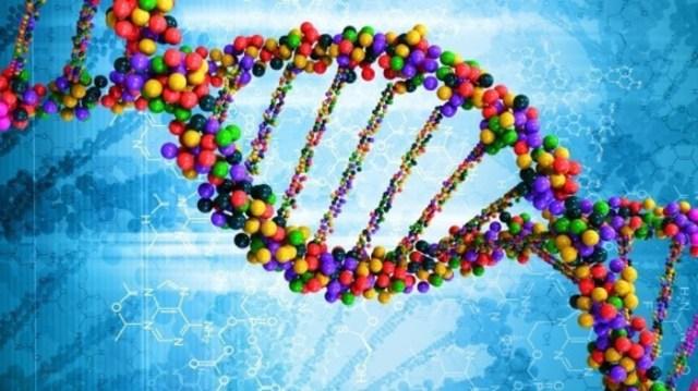 Ulisse alla scoperta del DNA su Rai 3