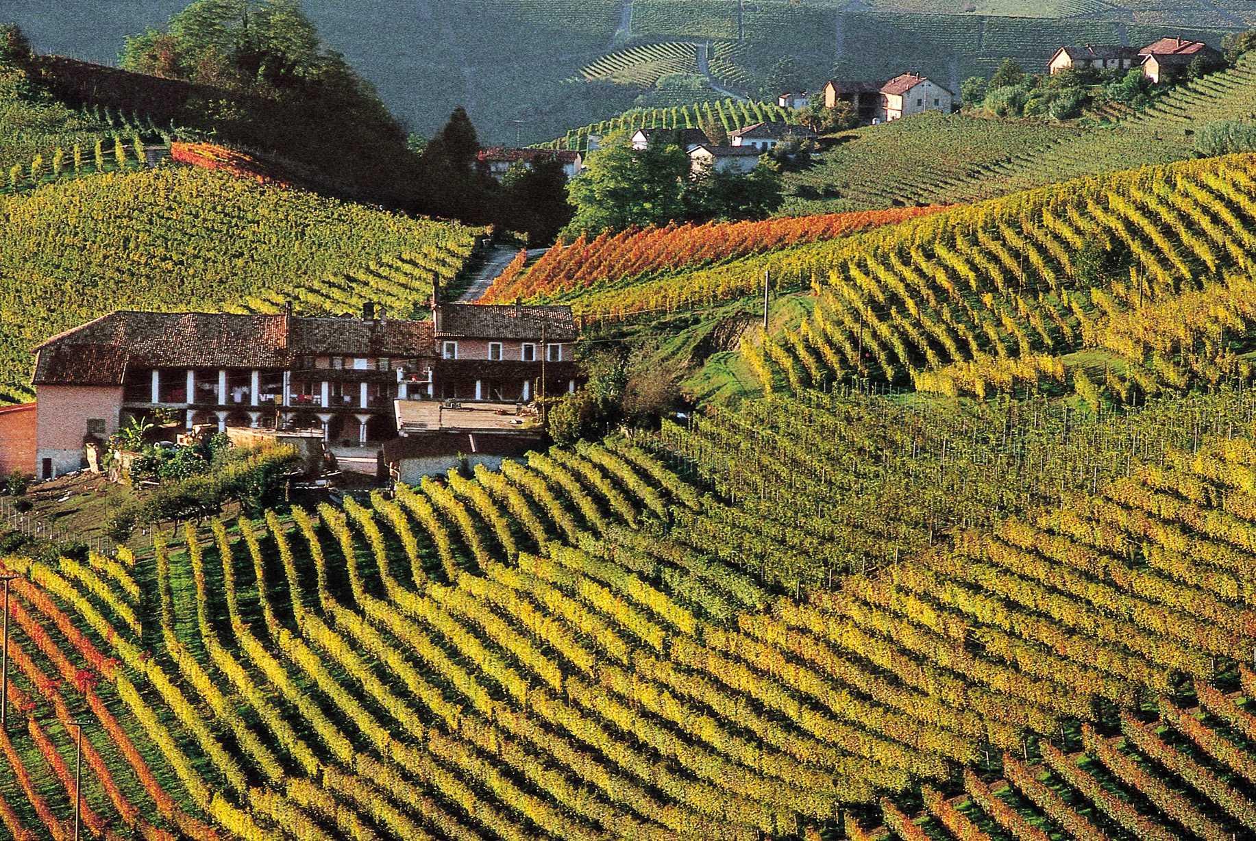 Il Piemonte e le Langhe  Tv News
