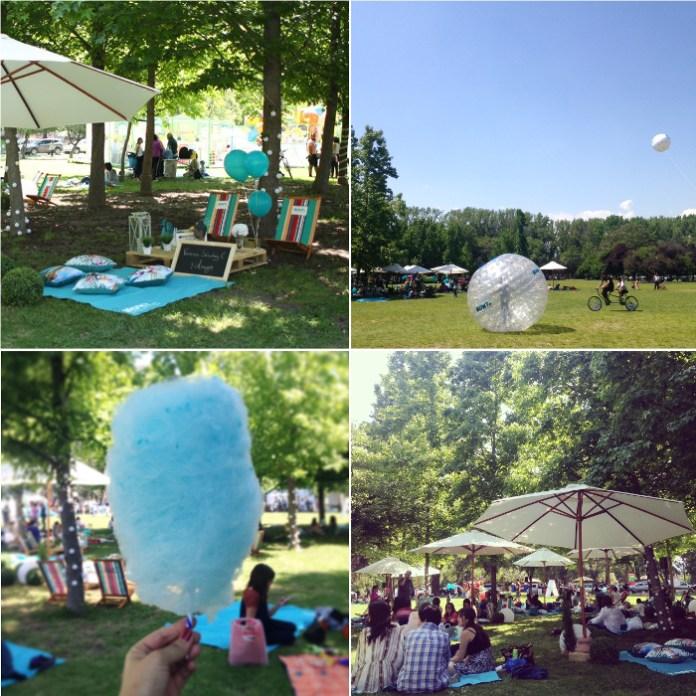picnichomy1