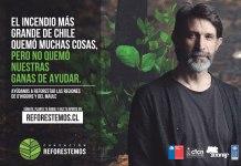 Campaña nacional de reforestación en VI y VII Región