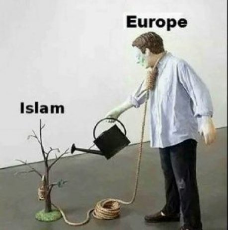 Europa wässert Islam