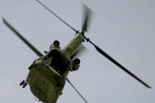 chinook-rnlaf-d652