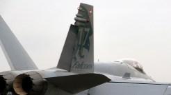IMGP3863 McDonnell Douglas F-A-18C Hornet Swiss AF J-5017
