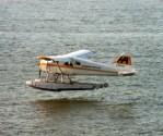 de Havilland Canada DHC-2 Beaver C-FFHQ Harbour Air