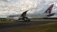 IMGP7541 Boeing 787-8DZ Dreamliner N10187 Qatar Airways