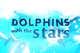 """""""Golfinhos com as Estrelas"""" recebe reclamações internacionais"""