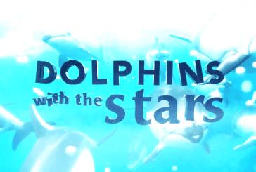 """Fechado: conheça os 10 concorrentes do """"Golfinhos com as Estrelas"""""""
