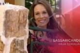 """Antepenúltimo episódio de """"Sassaricando"""" bate recorde"""