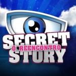 """Penúltima gala do """"Secret Story: O Reencontro"""" vai a mínimos, mas lidera"""