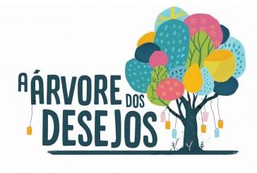 """""""A Árvore dos Desejos"""" marca novo recorde"""